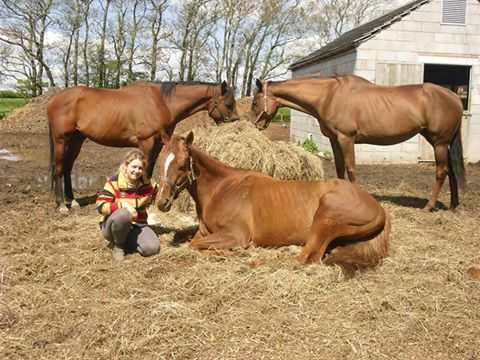 Worthwhile: Volunteer Lisa Thomson from the Racehorse Rescue Centre at Westlinton, near Carlisle, which is upgrading its centre