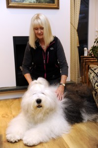 One from our archives: Alex with Old English sheepdog Anna, pictured here 18 months ago – with Anna's hair looking perfect!